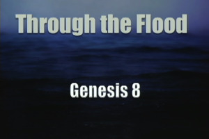 through the flood